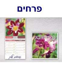 פרחים, לוח קיר 6 / 1 7 דפים תאריכון דו חודשי
